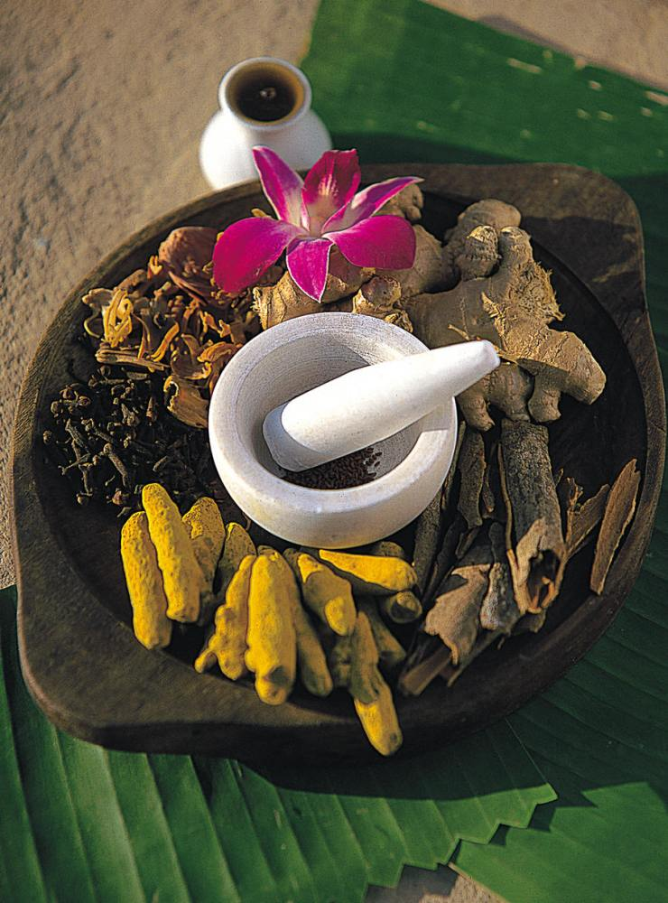 Ayurveda and Yoga Tours for Gay and Lesbian Travelers (2/2)